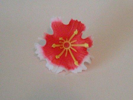 floare de nalba